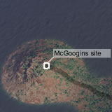 McGoogins site
